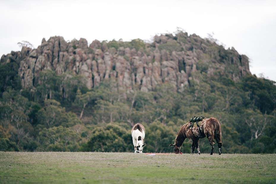 Environment & Lifestyle – Hanging Rock